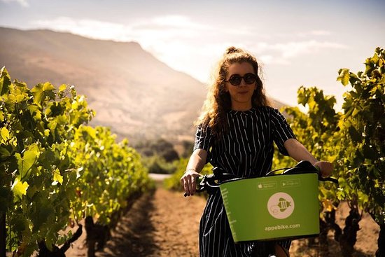 E-Bike Wine Tour ai vigneti Comte