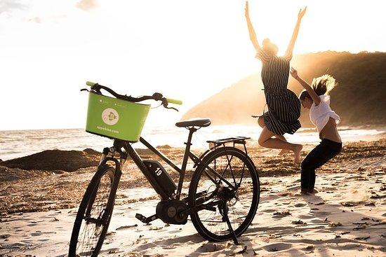 Visite guidée à vélo électrique des...