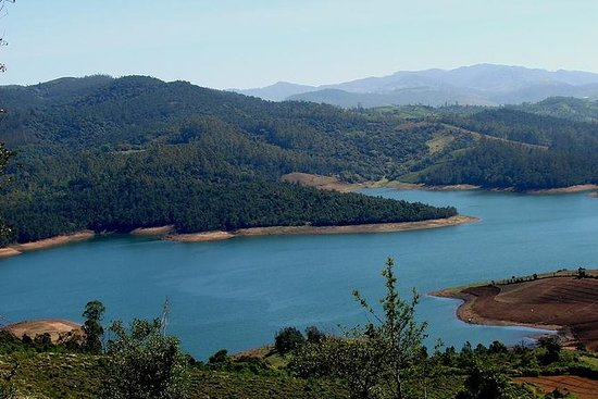 Private Custom Tour: Ooty Sightseeing...