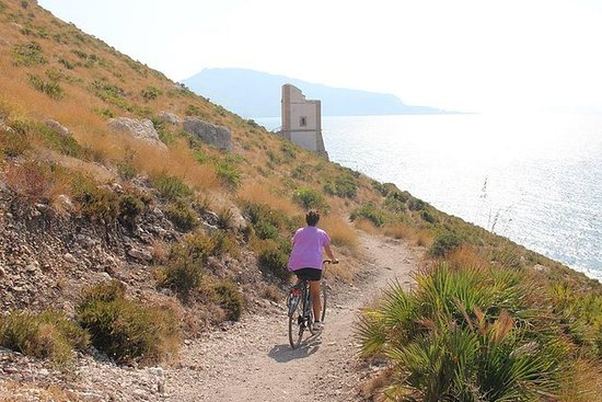 From the Mountain to the Sea:Erice...