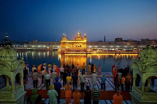 Visita serale del Tempio d'oro di