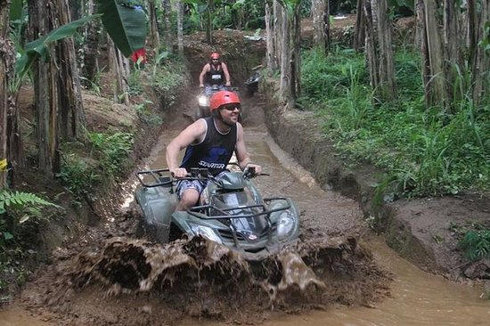 Bali ATV Ride with Swing and Rice...