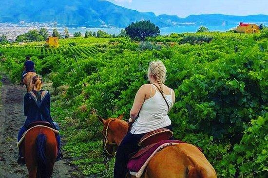 Paardrijden op de Vesuvius