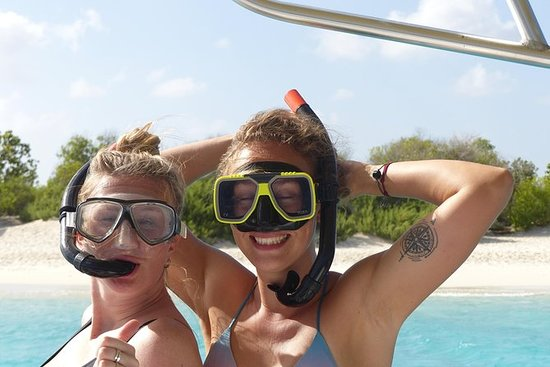 Bonaire 2 stop Marine Park Snorkeling...