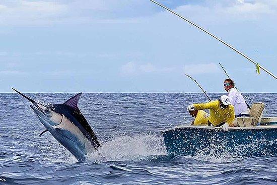 从蓬塔卡纳深海钓鱼半日冒险