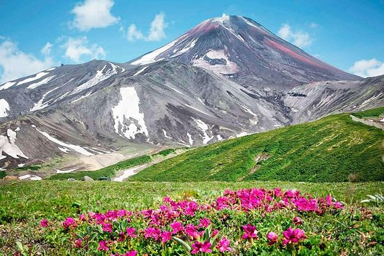 Kamchatka Day Tour: Trekking Avacha...