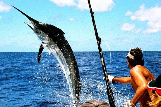 Deep Sea Fishing Uvero Alto by...