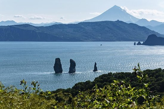 Privat tur: Kamchatka båttur