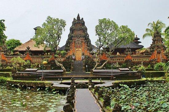 Bali todo incluido: Ubud Rice...