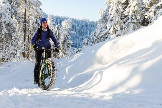 Fat Bike Tour électrique