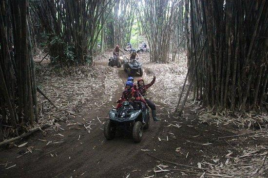 Paseo en ATV por Bali y visita...