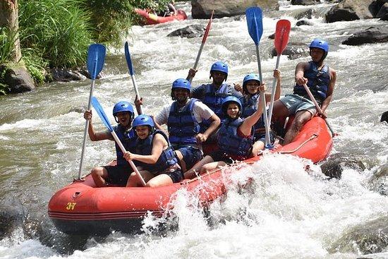 Bali Ayung Rafting y ATV Ride...