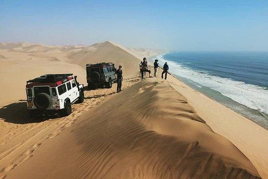 Mola Mola Marine Dune Experience