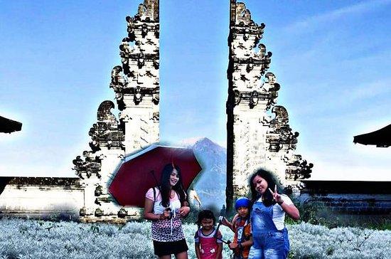 Best Bali Snapshot Tour of Edelweiss...