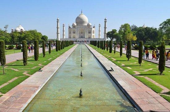 Taj Mahal Agra Tour de carro de Delhi