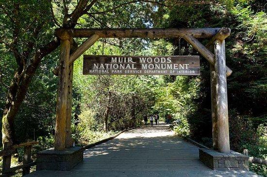 Muir Woods, Sausalito e San Francisco...