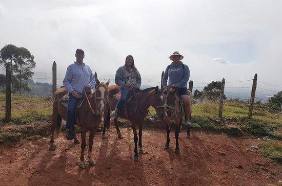 Tour Guatapé e Cavalgada de Medellín