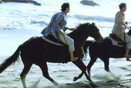 Гоа, Индия: Love To Ride On Goa Beach