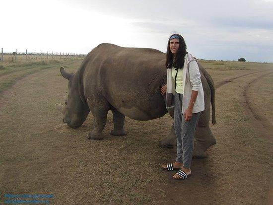 Laikipia County, เคนยา: Vegan guest from UK, at Ol-Pejeta conservancy