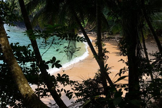 Фотография Sundy Praia Principe Island