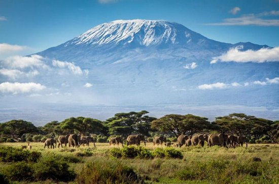 welcome to kilimanjaro roff of africa