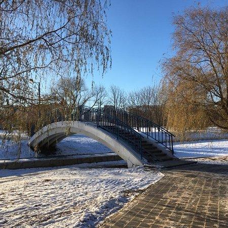 Зимние ноябрьские виды