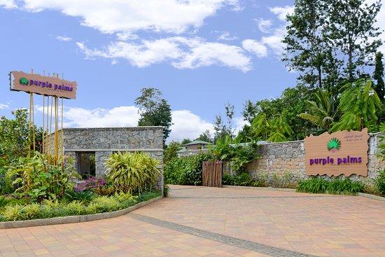 Purple Palms Resort & Spa,Coorg