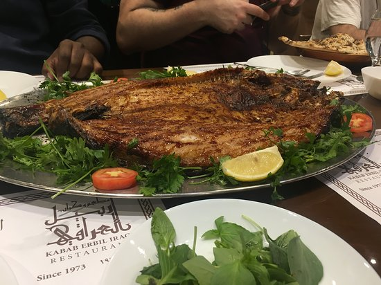 Iraqi Masgouf--a slow-smoked carp-like fish glazed with pomegranate molasses. We got to see it smoking as well!