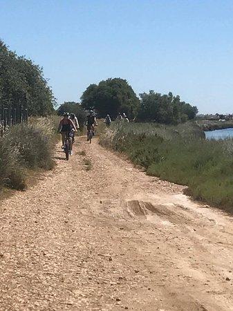 In Gruppen ab 4 Personen geht es durch die Algarve