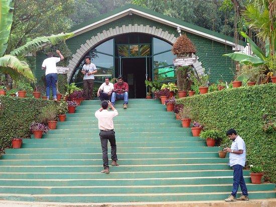 Gavi, Индия: entrance