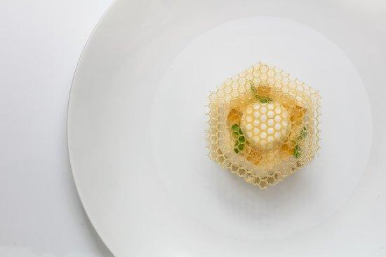 Lemonade parfait, honey and yoghurt