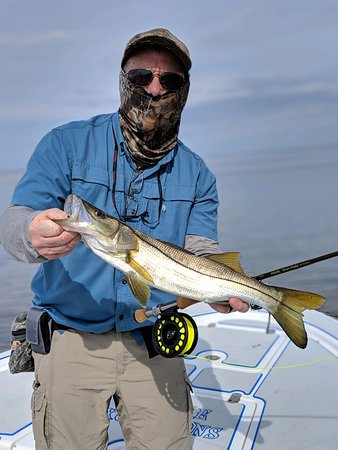 Inshore Excursions LLC: Snook fishing with Capt. Mike