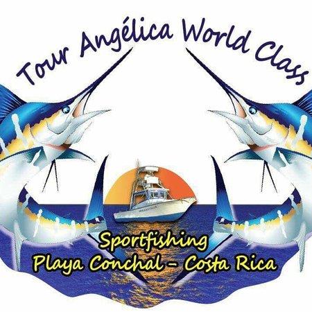 Flamingo, FL: Tour Angelica Sport Fishing