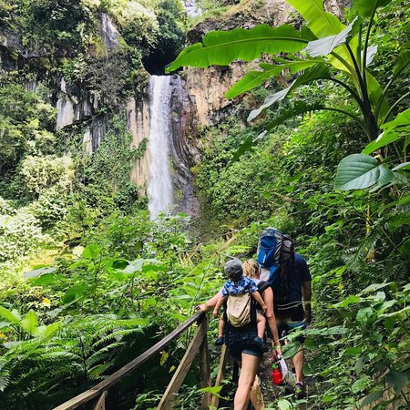 Get Lost In Costa Rica: The little guy got too scared to do the zip line but he did go down the 40 meter water slide. Great day horseback riding, hiking to a waterfall, going in hot springs and of course zip lining (for most of the group).