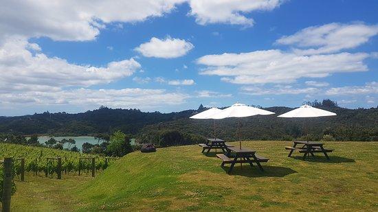 Omata Estate: Dining in the vines
