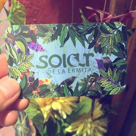 Богота, Колумбия: Nuestra tarjeta de presentación con ilustraciones de aves