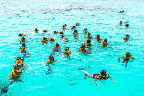 Cst Travel: Snorkel en grupo en Cozumel