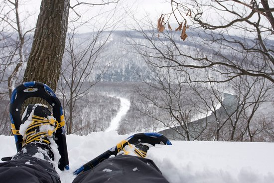 Go snowshoeing in Laurel Highlands' snow-covered state park.