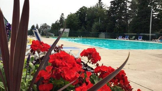 Landscape - Picture of Campers City RV Resort, Moncton - Tripadvisor