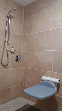 Accessible Bathroom - shower controls out of reach from seat