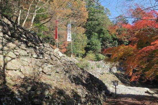 The Site of Tsunomure Castle