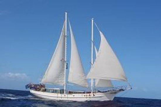 Langkawi Sailing and Island Hopping...