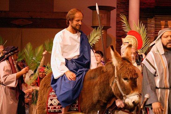 Palm Sunday in Jerusalem: Mass at...