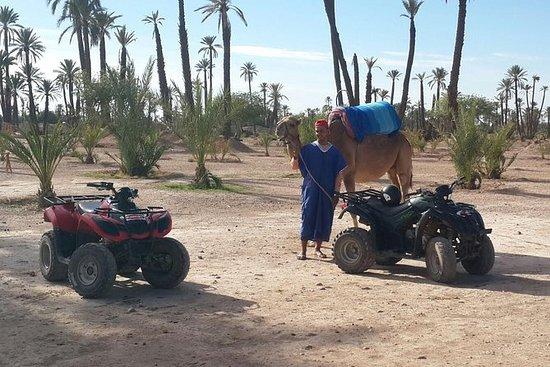 Marrakech Quad Sykling og Camel...