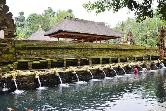 Tour privado de Ubud: Batubulan...