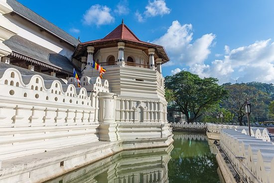Private Tour: Kandy Day Tour from...