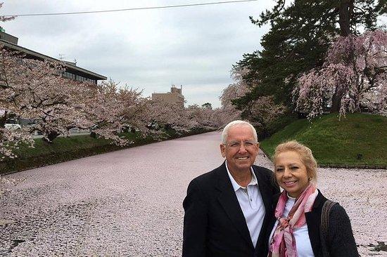 Private Cherry Blossom Tour in...