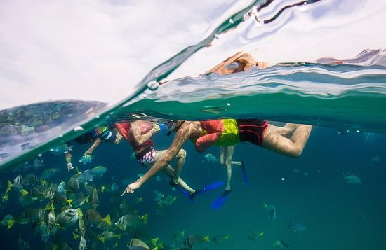 カボサンルーカスのロマンチックな休暇:シュノーケルとガラス底ボートツアー