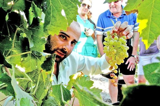 Full Day Sherry Wine Experience desde...