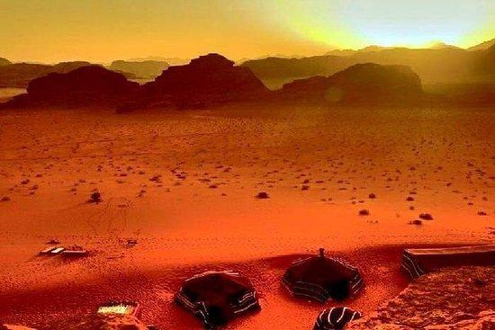 Eintägige private Tour: Wadi Rum von...